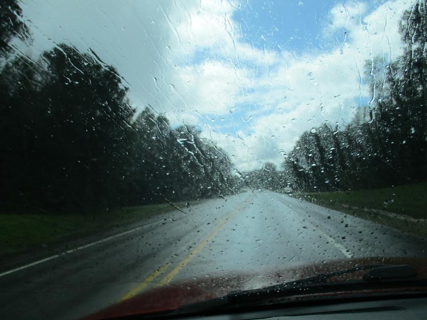 8 day rain 1a.JPG