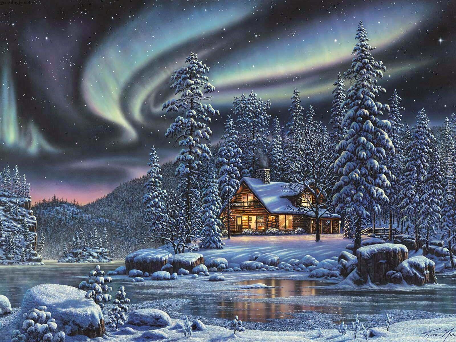 Alaskan Winter Night Painting.jpg