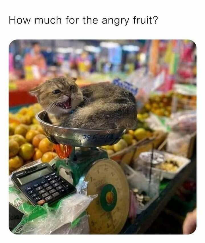 angry fruit.jpeg