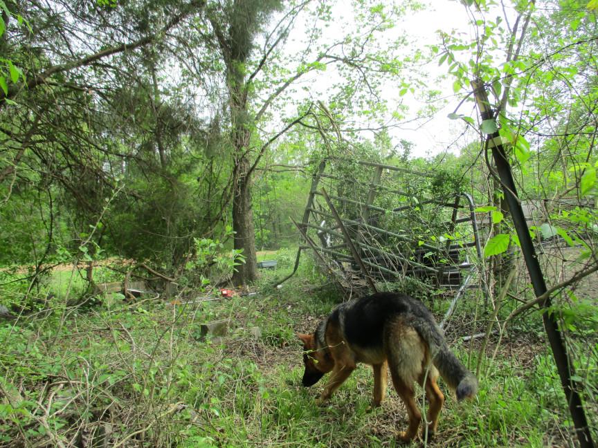 Corral fence ( 6) sm.JPG