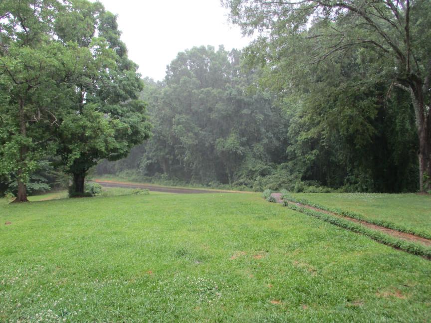 Rain (2)a.JPG