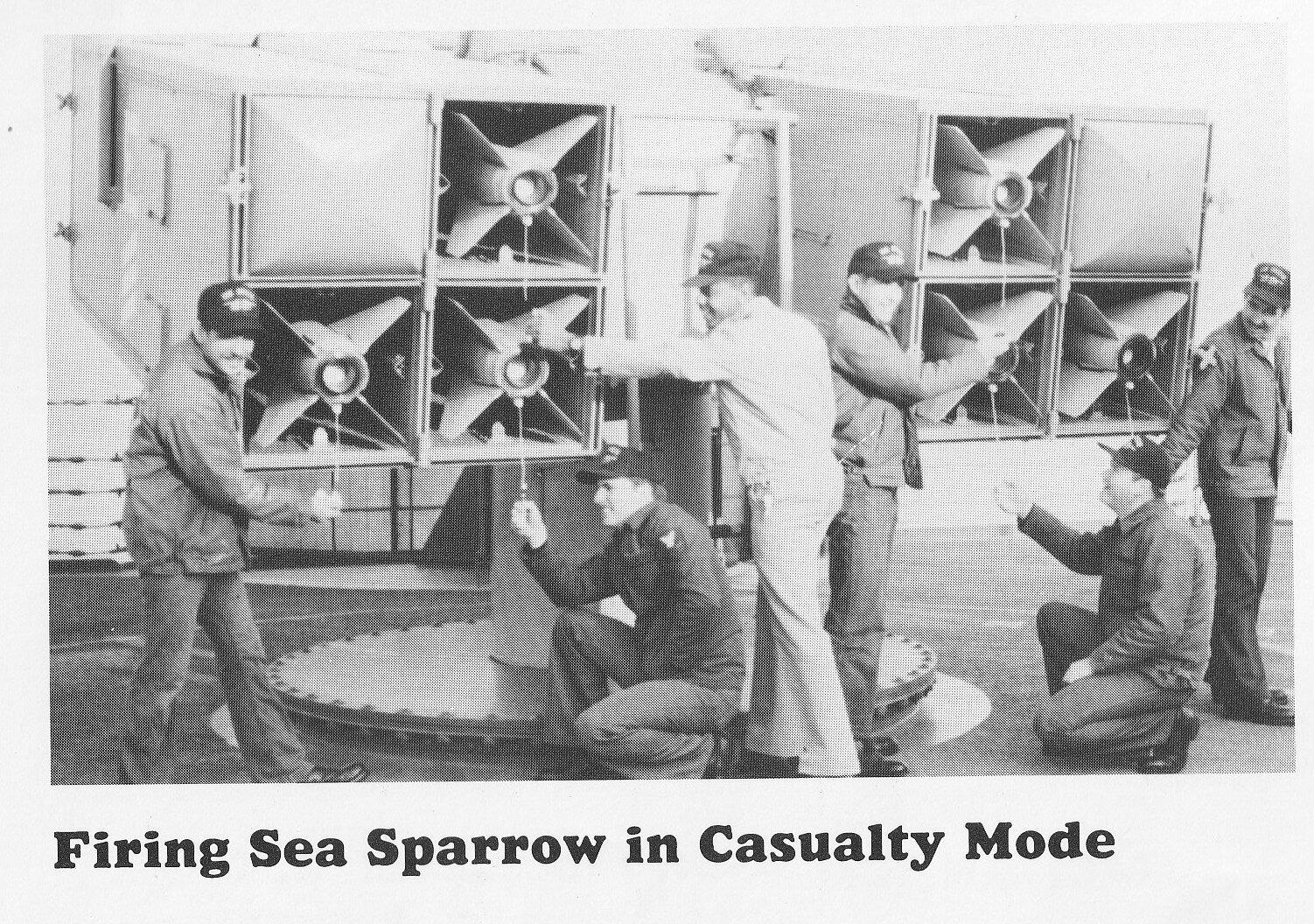 Sparrow 20.jpg